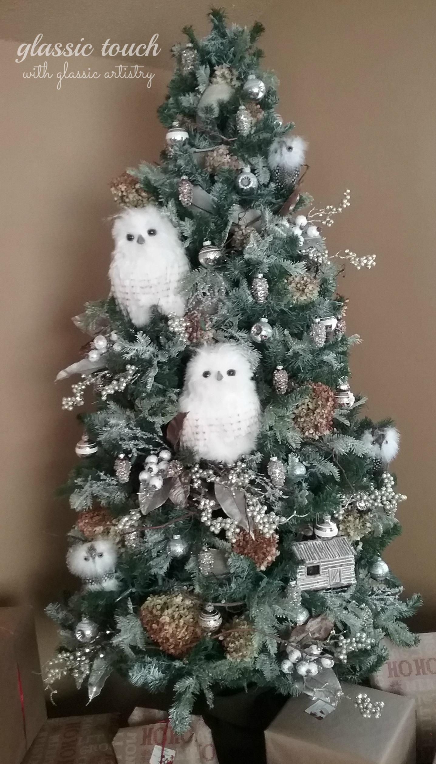 Owl Tree 2017